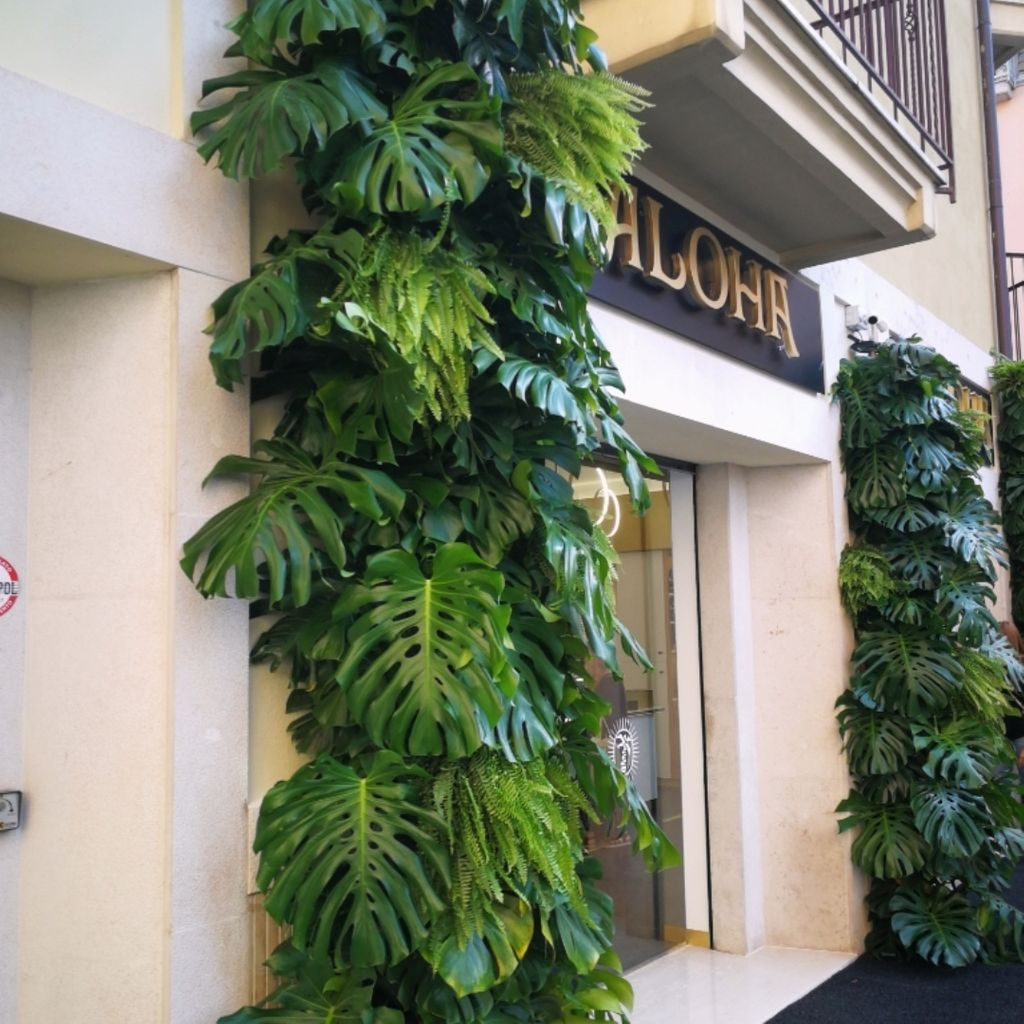 Ice Cream Shop Aloha Avellino