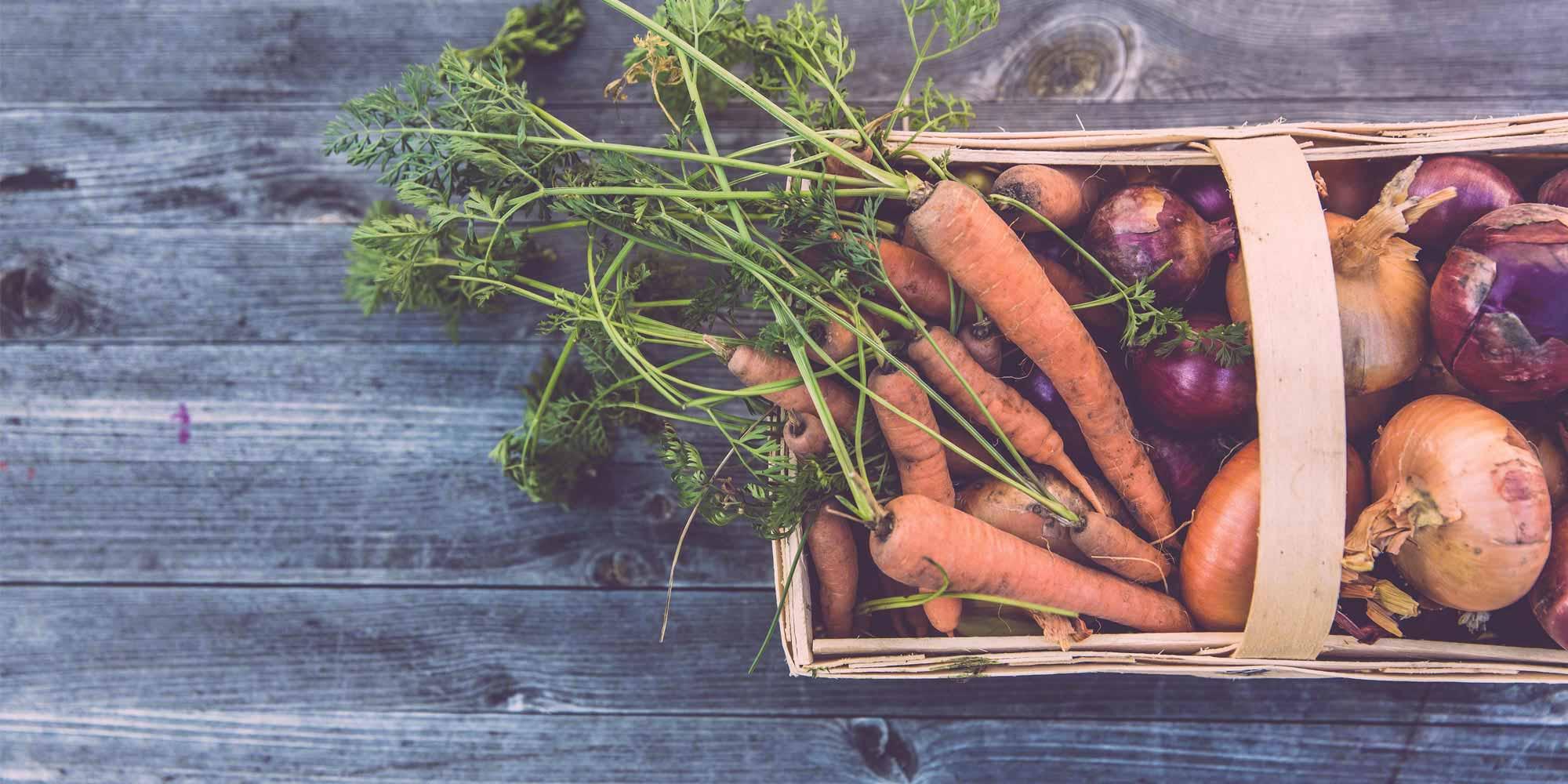 , L'ECORISTORAZIONE: IL VERDE IN CUCINA, Foodiestrip.blog