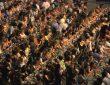 SUMMER EVENTS, NOT JUST FOOD FESTIVALS: POPSOPHIA!