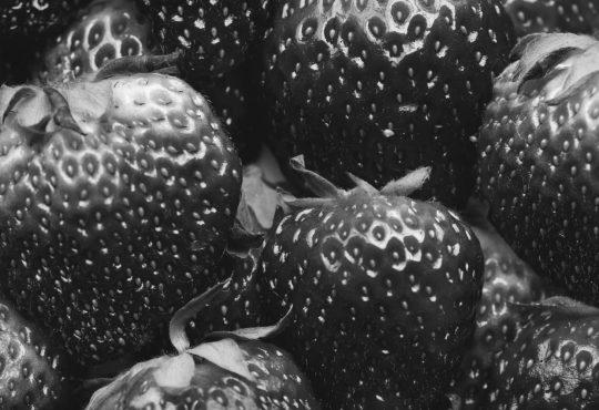 CORONAVIRUS E FOOD DELIVERY: CONSIGLI AI RISTORATORI