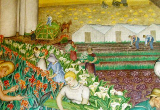 COVID E AUMENTO DEI PREZZI: LA CRISI AGROALIMENTARE E COME USCIRNE